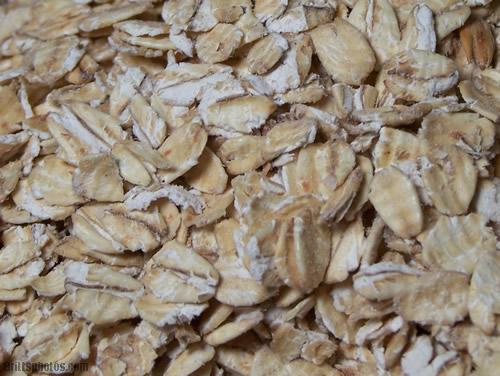oats | Millers Grain House