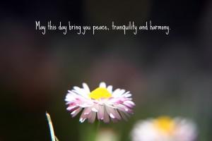 peace harmony tranquility
