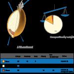 wheat nutrition breakdown